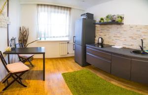 Кухня или мини-кухня в Apartment on Vesny, 7a by KrasStalker