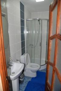 A bathroom at Syni Potoky