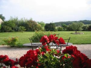 A garden outside Terre de Garance