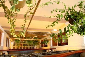 Hall ou réception de l'établissement Nguyen Shack - Saigon Tea Coffee & Spirit Collection