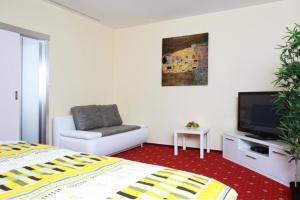 TV a/nebo společenská místnost v ubytování Vila Jiřinka