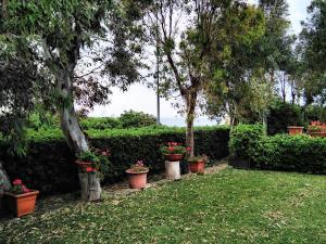 A garden outside Hotel Baia Del Sole
