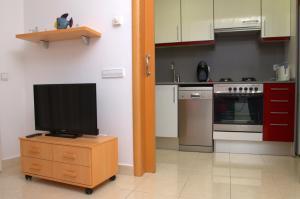 A television and/or entertainment center at Apartamentos Navas