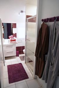 A bathroom at Chambres et Espace Détente Bien-Être Sologn'ami