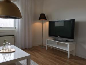 A television and/or entertainment center at The Arctic Apartment