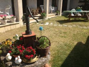 Ogród w obiekcie Dom Nad Morzem Chłopy