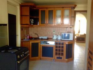 A kitchen or kitchenette at Král Panzió