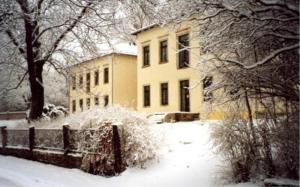 Villa Seraphinum зимой