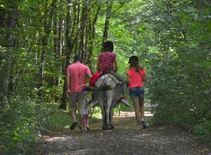 Équitation au sein de le séjour à la ferme ou à proximité