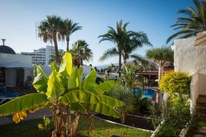 Een tuin van HD Parque Cristobal Tenerife