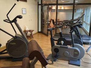 Das Fitnesscenter und/oder die Fitnesseinrichtungen in der Unterkunft Dorint Hotel am Dom Erfurt