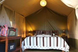 A room at Wildebeest Eco Camp
