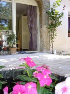 Terrasse ou espace extérieur de l'établissement La Vigne Des Heures Claires