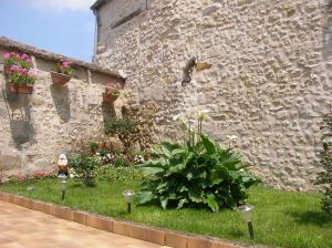 A garden outside Le 5