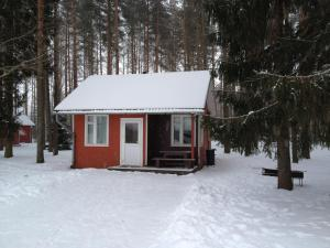 Baiļi during the winter