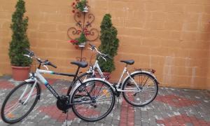 Kerékpározás Mónika Vendégház környékén