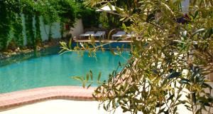 The swimming pool at or near Hotel Pighi