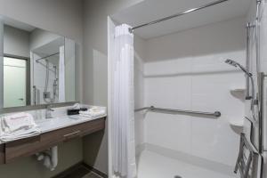 A bathroom at Holiday Inn San Marcos Convention Center, an IHG Hotel