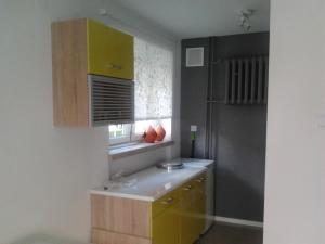 Kuchnia lub aneks kuchenny w obiekcie Apartament Dana