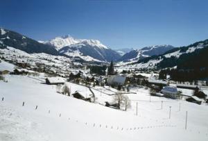 Hotel Saanerhof during the winter
