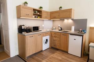 Кухня или мини-кухня в Karlova 25 Apartments