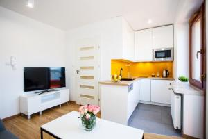 A kitchen or kitchenette at Apartamenty SaltApart