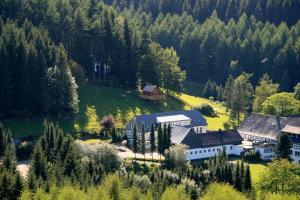 A bird's-eye view of Hotel Gut Vorwald