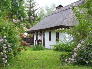 A garden outside Nádfedeles vendégházak