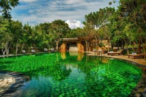 Piscina en o cerca de Uga Chena Huts – All Inclusive