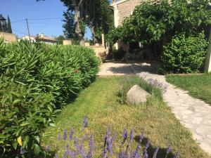 A garden outside Auberge Les Olivades