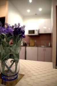 Kuchnia lub aneks kuchenny w obiekcie Apartamenty Astur