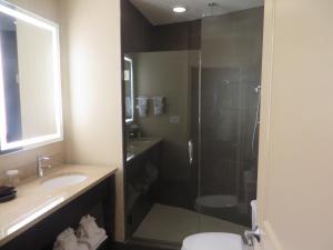 A bathroom at BEST WESTERN PLUS Hawthorne Terrace Hotel