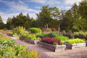 A garden outside Rudding Park