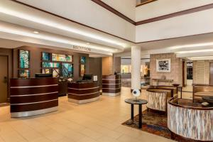 The lobby or reception area at Embassy Suites by Hilton Orlando International Drive ICON Park