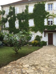 Jardin de l'établissement Villa Saint-Georges