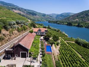 A bird's-eye view of Quinta de S.Bernardo - Winery & Farmhouse