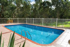 The swimming pool at or near Box Hill Motel