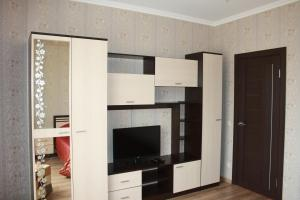 Телевизор и/или развлекательный центр в Apartments on Molodogvardeyskaya