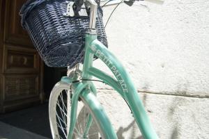 Montar en bicicleta en Petit Palace Arenal o alrededores