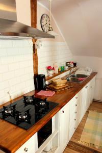 Kuchnia lub aneks kuchenny w obiekcie Apartament Margarita