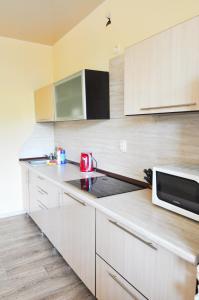 Кухня или мини-кухня в Apartments at Sheronova 2