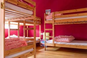 A bunk bed or bunk beds in a room at Las Dunas Hostel