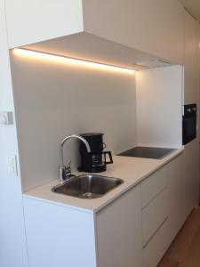 Cuisine ou kitchenette dans l'établissement Studio Zeezicht