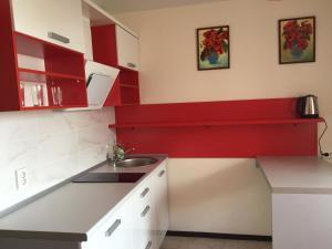 Кухня или мини-кухня в Apartments on Vladimira Nevskogo