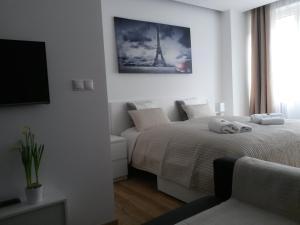 TV/Unterhaltungsangebot in der Unterkunft Apartments Opletalova 9