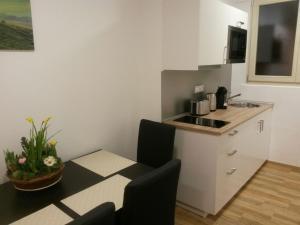 Küche/Küchenzeile in der Unterkunft Apartments Opletalova 9