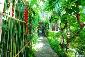 Jardin de l'établissement Shewe Wana Suite Resort