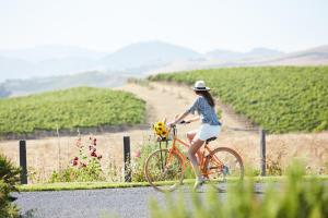 Cycling at or in the surroundings of Carneros Resort and Spa