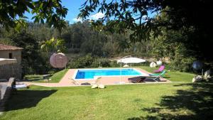 A garden outside Alegre Monotonia