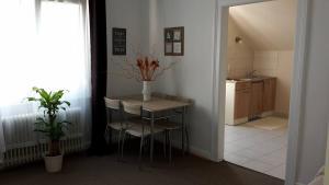 Küche/Küchenzeile in der Unterkunft Apartment Jackie